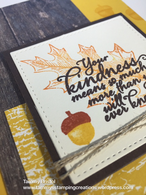 Tammy's Stamping Creations Stampin' Up! Painted Harvest