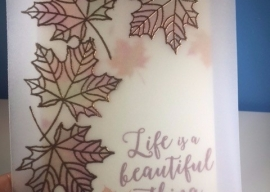 A Taste of Fall – World Card Making Day Specials